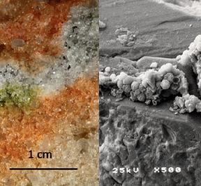 Hongos de la Antártida sobreviven a condiciones marcianas en la ISS