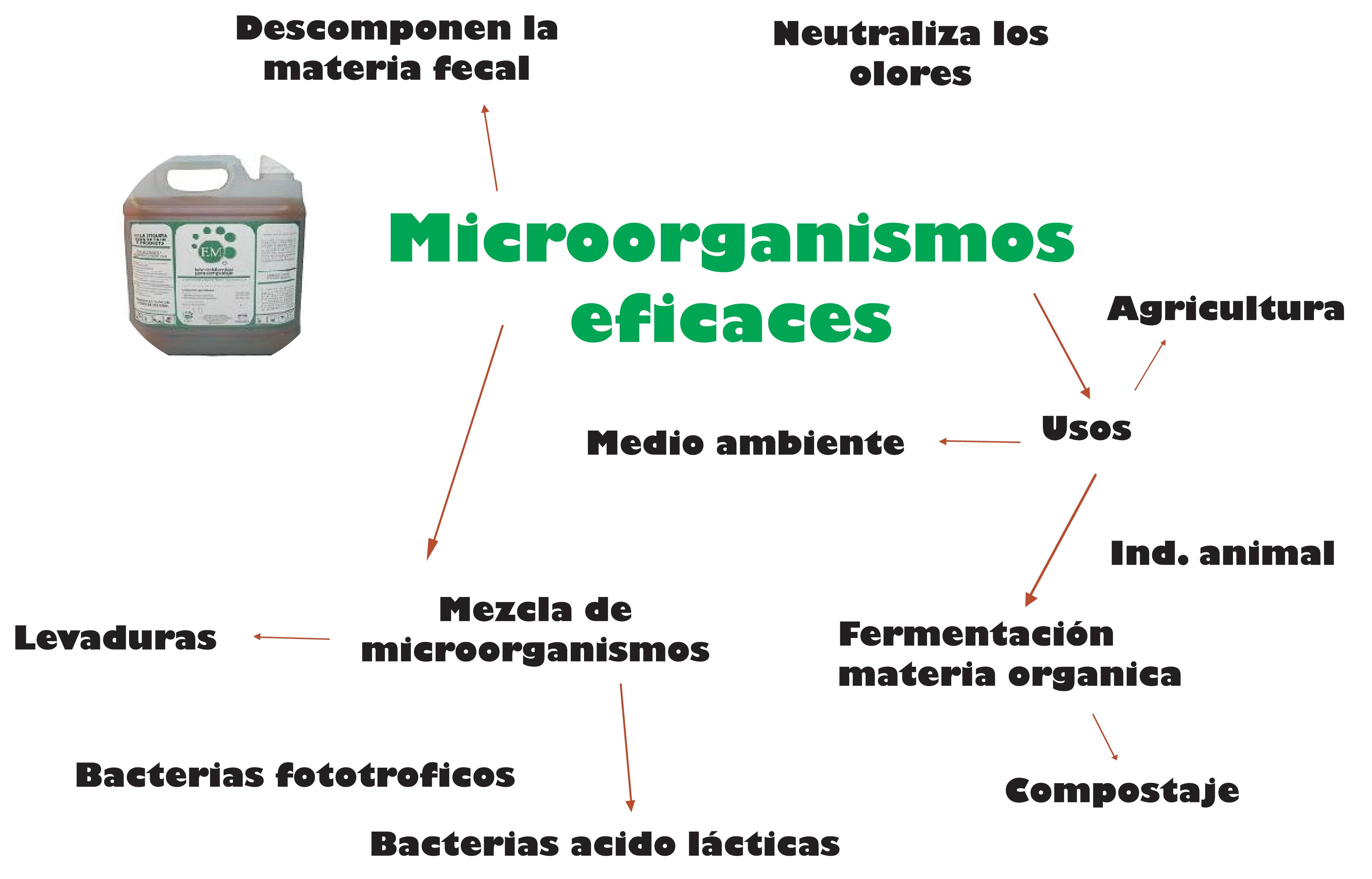 Microorganismos efectivos EM y zeolitas.